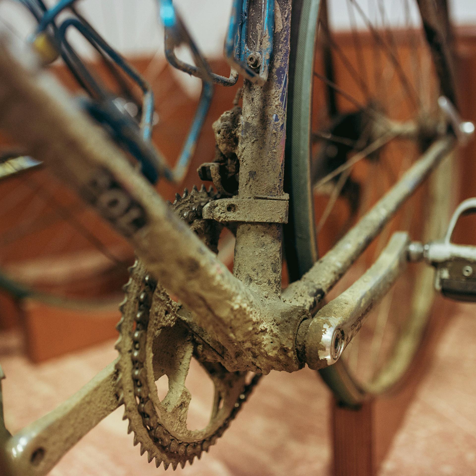 Paris-Roubaix winning bike