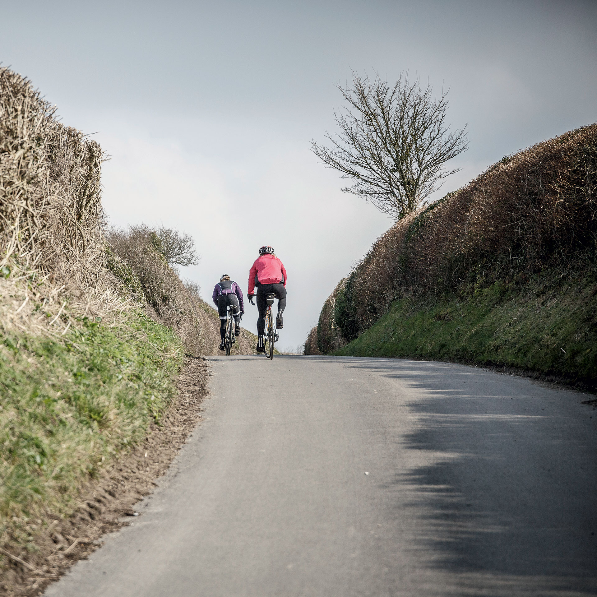 Sigma Sports Challenge Series Wiltshire Wildcat Sportive Road