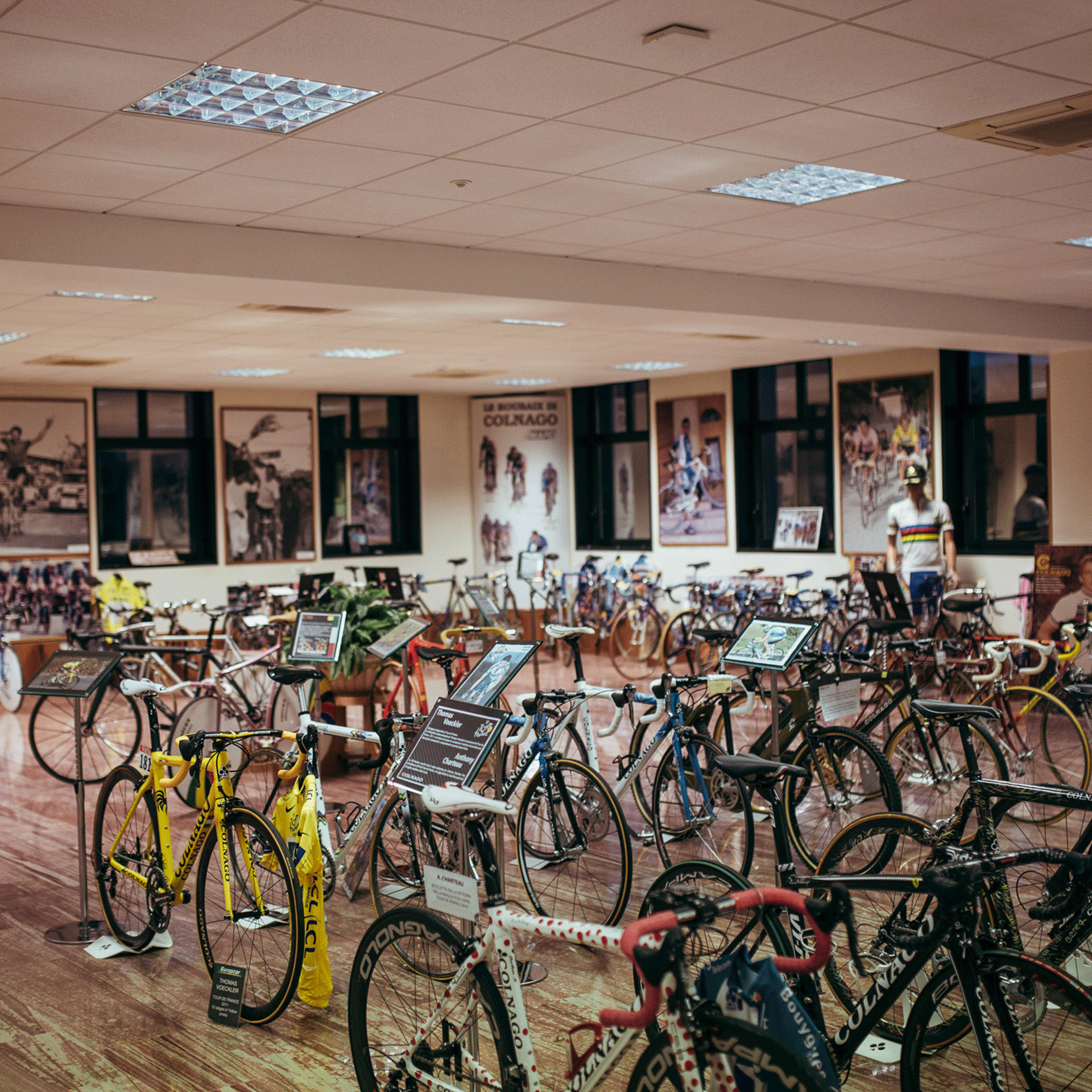 Colnago  Factory and Museum Visit  e20eb43a3