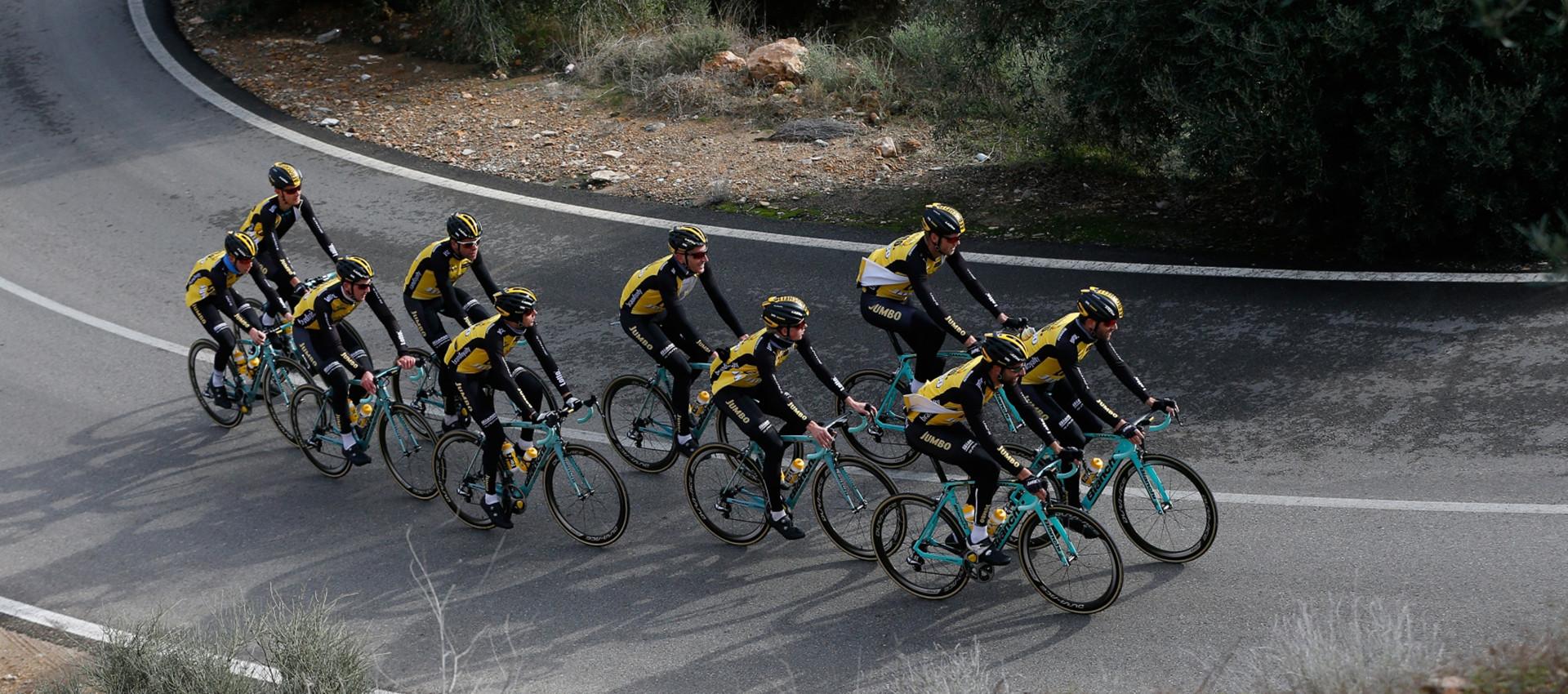 9d21877db Bianchi Road Bikes   Framesets