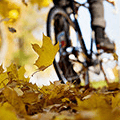 Make the most out of autumn cycling