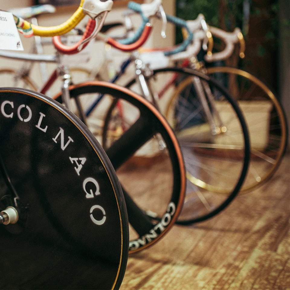 Colnago  Factory and Museum Visit  b8dff7458