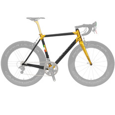 Colnago Limited Edition Dual Routed C60 Frameset Gold Raw Carbon