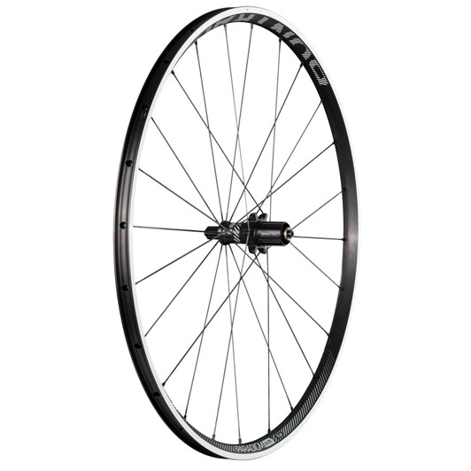Bontrager Paradigm Elite TLR Cool Grey Clincher Rear Wheel