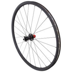 Roval Control SL Disc SCS 29 Clincher Rear Wheel