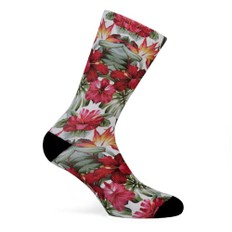 Pacific & Co. Guadalupe Coolmax Socks