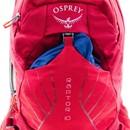 Osprey Raptor 14 Backpack
