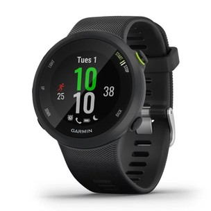 Garmin Forerunner 45 GPS Watch