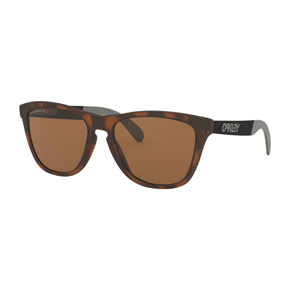 Oakley Frogskins Metallic Sunglasses With Prizm Tungsten Polarized Lens