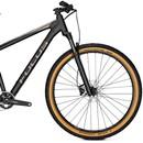 Focus Whistler 3.9 29 Hardtail Mountain Bike 2020