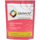 Tailwind Nutrition Caffeinated Endurance Fuel Energy Drink 1350g