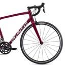 Specialized Allez Road Bike 2021