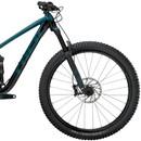 Trek Fuel EX 8 GX Mountain Bike 2021