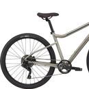 Cannondale Treadwell 2 Ltd Disc Hybrid Bike 2021
