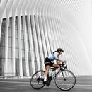 Black Sheep Cycling WMN Womens Climbers Jersey