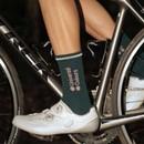 Universal Colours Mono Merino Socks