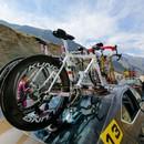 TreeFrog Pro 2 Bike Rack