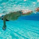 Zone3 Ergo Swim Training Paddles